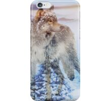 Snowy Forest iPhone Case/Skin