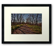 Light Path,Secchia River,Sassuolo,Italy. Framed Print