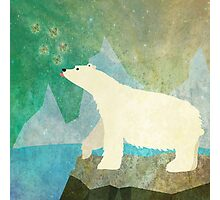 Playful Polar Bear in the Northern Lights Photographic Print