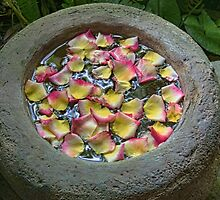 Colourful Petals Floating in Large Clay Bowl by Gerda Grice