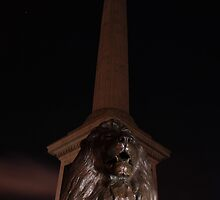 Nelsons Column at night by Dave Godden