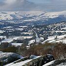 Surprise View Snowscape by Steven  Lee