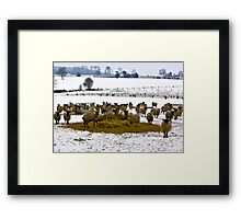 On a Cold November Afternoon Framed Print