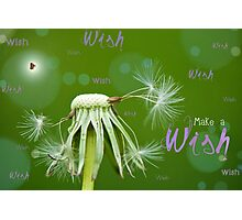Make a Wish Card Photographic Print