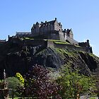 Edinburgh Castle and Princes Street Gardens by ljm000