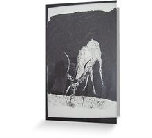 STAG DRINKING WATER Greeting Card