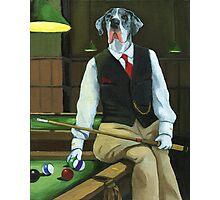 """Mr. Thomas Tudor"" - great dane portrait Photographic Print"