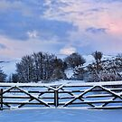 Snowy Gates by Lynne Morris