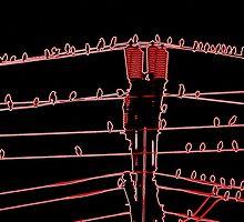 Neon Tweeters by SilverLilyMoon