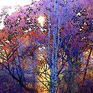 autumn splendor by jashumbert