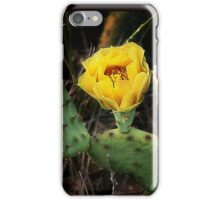 Wild Cactus/ Illinois iPhone Case/Skin