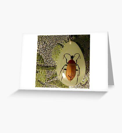 bug pendant on pashmina Greeting Card
