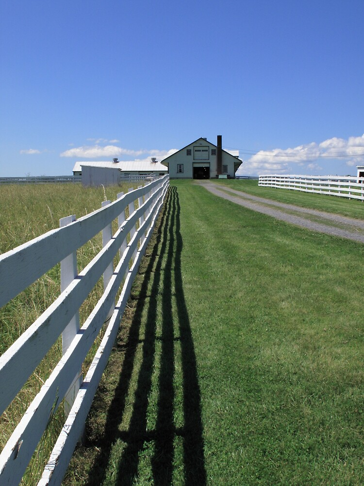 Farmhouse and Fence by Frank Romeo