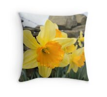 Spring Arrives! Throw Pillow