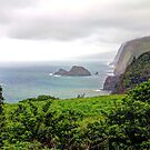 Pololu Valley Lookout, Hawai'i, USA by Clark Thompson