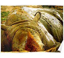 Mud Bath Poster