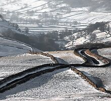 Cam Gill Road - Winter by SteveMG