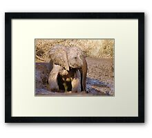 BABY ELEPHANT MUDBATH - SERIES: # UP CLOSE AND PERSONAL WITH ELPHANTS Framed Print