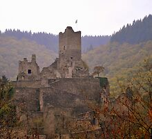 Manderscheid Castle in the Fall by Gayle Dolinger