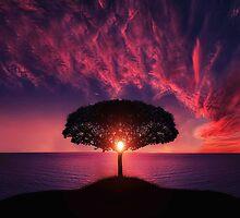 Sunset Tree by Arizonagirl