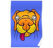Orange Puppy Poster
