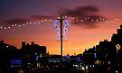 November Sky by Mojca Savicki