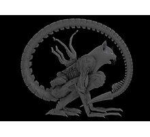 Alien Cat Photographic Print