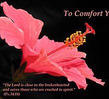 Comfort series: Ps. 34:18 by hummingbirds