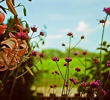Tigers & Such by © Jolie  Buchanan