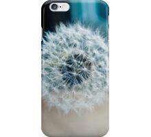 Dandelion II iPhone Case/Skin