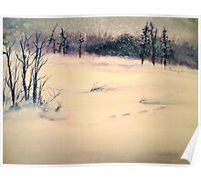 Landscape....Midwinter Light Poster
