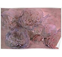 """""""Faded Roses ...."""" Poster"""