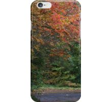 Vining maple in autumn iPhone Case/Skin