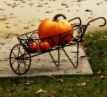 Pumpkin Barrow by Rodney Williams