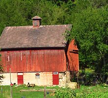Barn in the Woods by lorilee