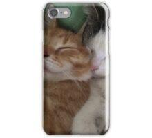 Cuddling kitties iPhone Case/Skin