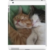 Cuddling kitties iPad Case/Skin