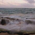 Wailua Surf by Diana Forgione