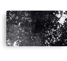 Black & White Splatter Canvas Print