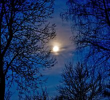moon shot by pinoart