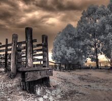 Cattle ramp #1 by BigAndRed