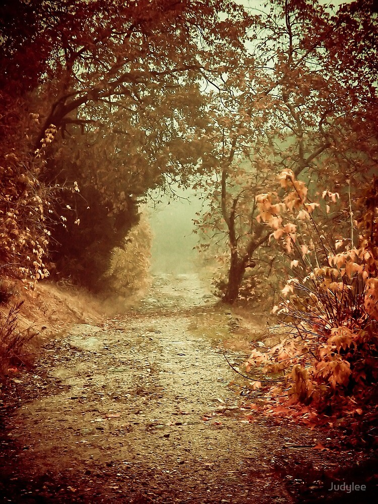 Path of Memories by Judylee