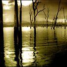 Lake Moogerah Mood by Kym Howard