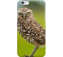 Winking  Owl-Burrowing owl iPhone Case/Skin