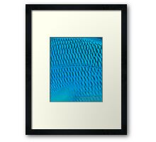 Blue Scale Framed Print