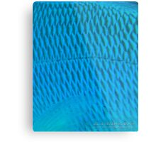 Blue Scale Metal Print