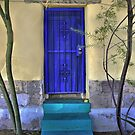 The Blue Door by Barbara Manis