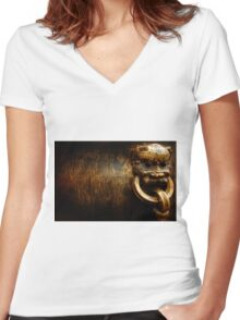 Ancient History Women's Fitted V-Neck T-Shirt