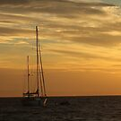 Moreton Island by Edyta Magdalena Pelc