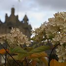 Cawdor Castle, Inverness-shire, garden view by BronReid
